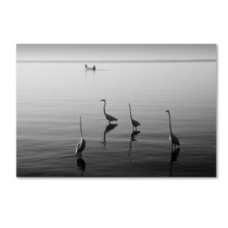 Moises Levy '4 Herons and Boat' Canvas Wall Art