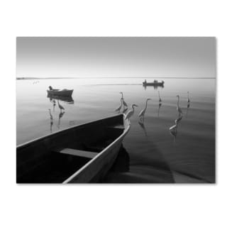 Moises Levy 'Herons and 3 Boats' Canvas Wall Art
