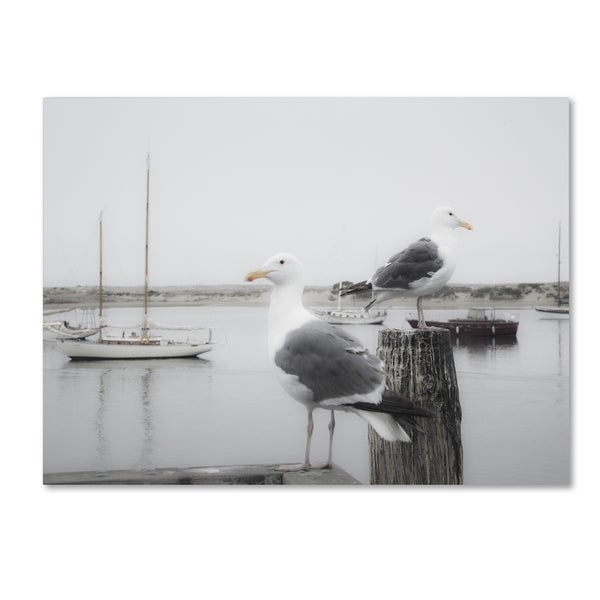 Moises Levy 'Two Seagulls & Boats' Canvas Wall Art
