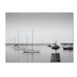 Moises Levy 'Four Boats & Seagull' Canvas Wall Art