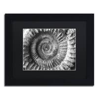 Moises Levy 'Amonita 2' Black Matte, Black Framed Canvas Wall Art