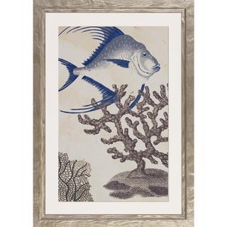 Shimmering Sealife Framed Art Print IV