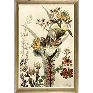 Berthaud Botanicals Framed Art Print IV