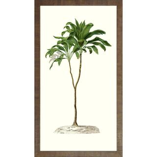 Tall Tropical Framed Art Print VI