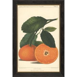 Satsuma Orange and Lemon Framed Art Print II