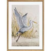 Heron Sanctuary Framed Art Print II