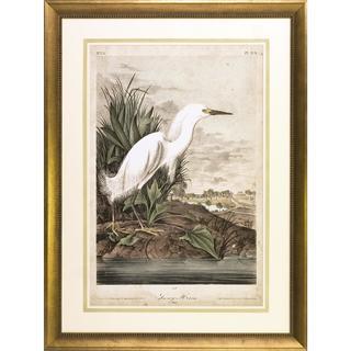 Audubon Herons Framed Art Print IV