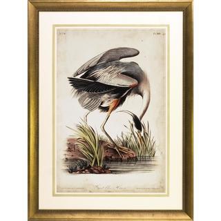 Audubon Herons Framed Art Print V