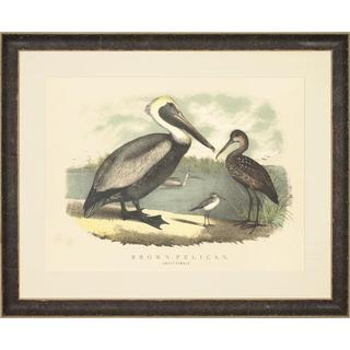 Spoonbill and Brown Pelican Framed Art Print I