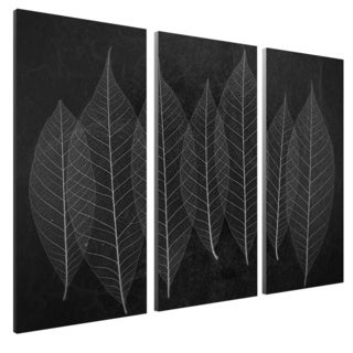 Moises Levy 'Leaves 3-inch Gallery Wrapped Canvas Wall Art