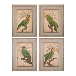 Parrot And Palm I, II, III, IV' Fine Art Giclee Under Glass Wall Art