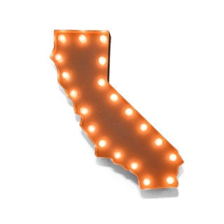Indoor/ Outdoor Commercial Grade Rusted Steel California State Marquee Light