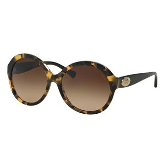 Coach Women's HC8149 Tortoise Plastic Round Sunglasses