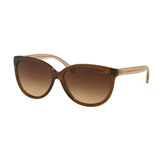 Coach Women's HC8153 Brown Plastic Square Sunglasses