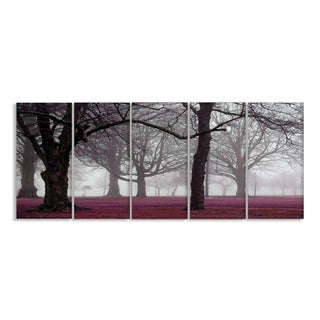 Stupell Photographic Foggy Trees 5-piece Canvas Art Set