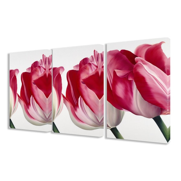 The Stupell Home Decor Collection Fresh Pink Tulips 3-piece Triptych Canvas Art Set