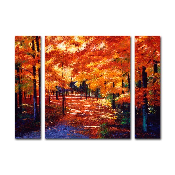 Shop David Lloyd Glover \'Magical Forest\' Three Panel Set Canvas Wall ...
