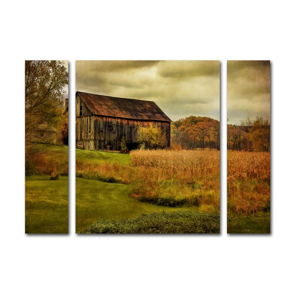 Lois Bryan 'Old Barn on Rainy Day' Three Panel Set Canvas Wall Art
