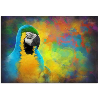 Ben Judd 'Parrot Splotch' Contemporary Rainbow Tropical Bird Art on Metal