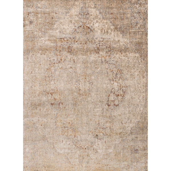 Traditional Beige/ Grey Medallion Distressed Rug - 9'6 x 13'