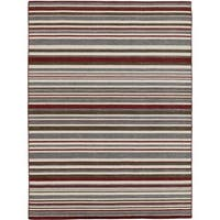 Bonny Doon Striped Design Flat Weave Area Rug - 4' x 6'