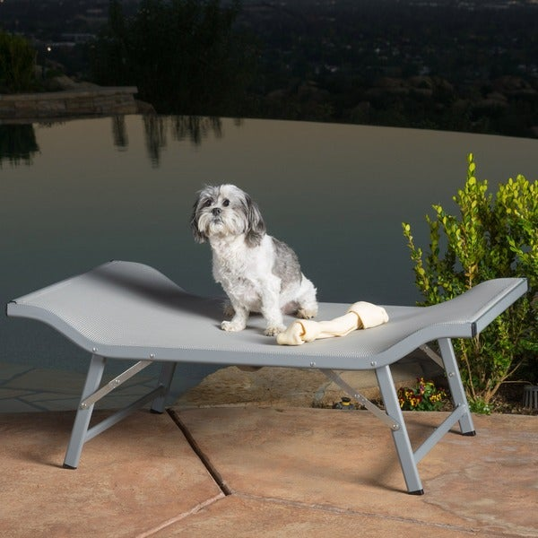 Benjy Indoor/ Outdoor Mesh Dog Bed by Christopher Knight Home ...
