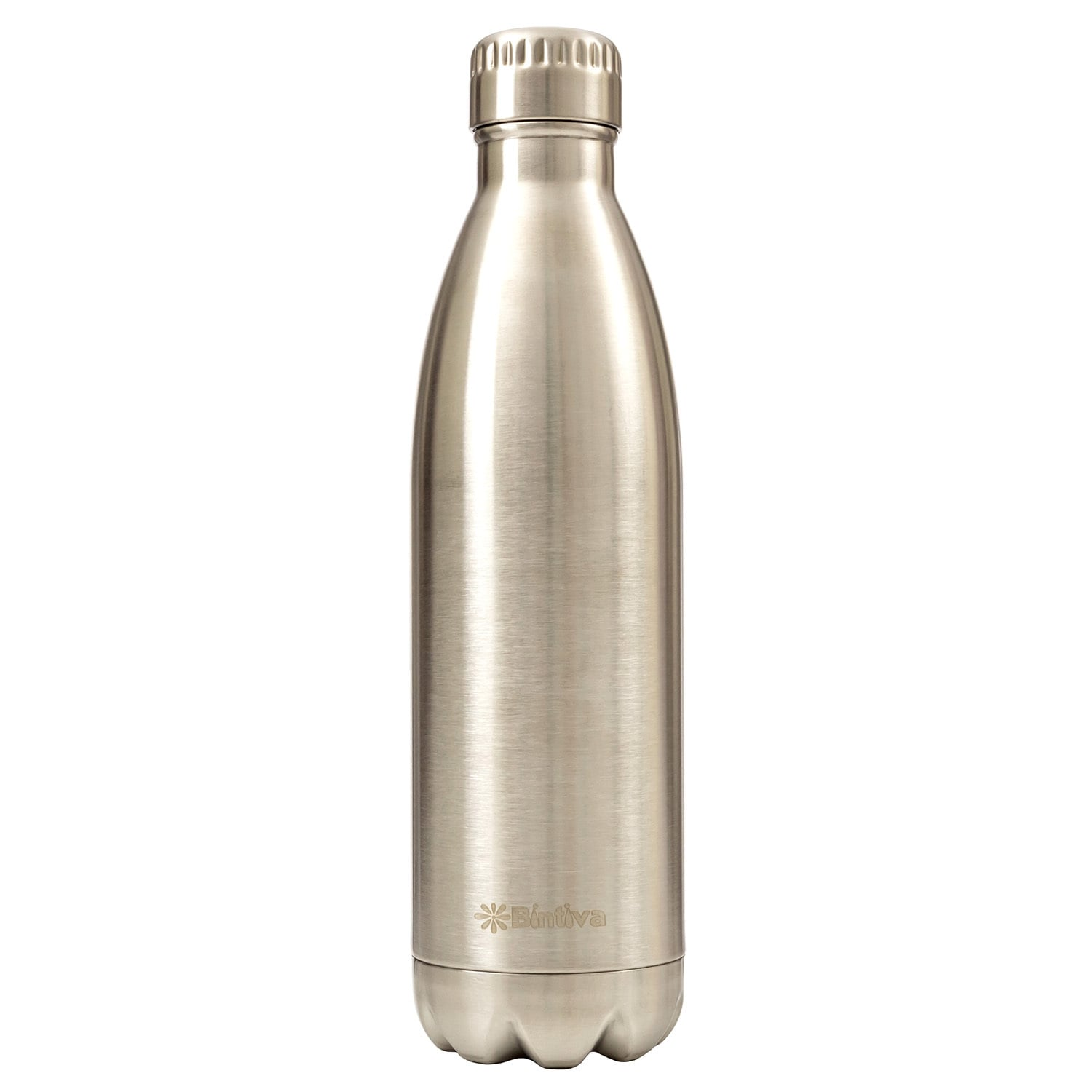 Bintiva Double Walled Vacuum Insulated 17-ounce Stainless...