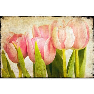 Marmont Hill - Pink Tulips CU by Malek Painting Print on Canvas