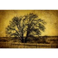 Marmont Hill - Roadside Tree by Malek Painting Print on Canvas