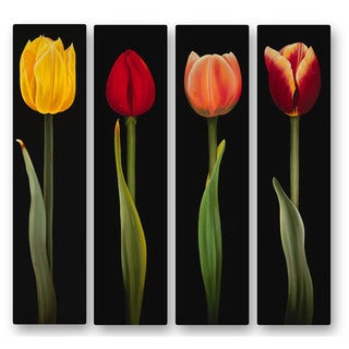 Metal Wall Art 'Tulips' Ora Sorenson