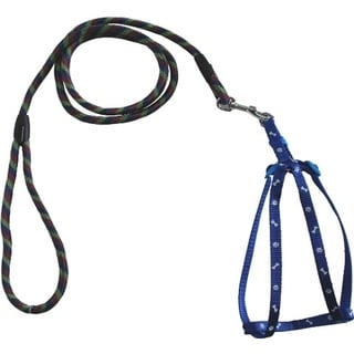 YML Bones and Paws Style Adjustable Pet Harness and Multi-Colored Leash Combo