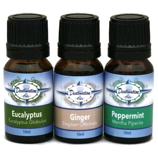 Destination Oils Get Well Therapeutic Grade Ginger/ Peppermint/ Eucalyptus Essential Oil Gift Set