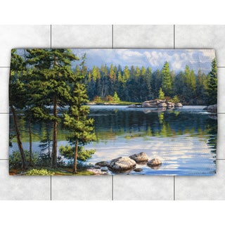 Blue Lake Accent Rug (2' x 3')