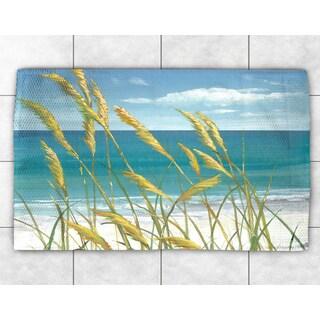 Ocean Breeze Accent Rug (2' x 3')