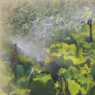 Genesis 20' Mirco Sprinkler Watering System by Riverstone Industries|https://ak1.ostkcdn.com/images/products/10953182/P17979142.jpg?impolicy=medium