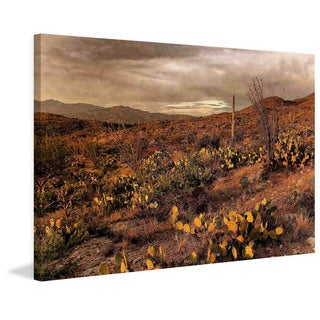 Marmont Hill - Desert Sunset by Robertson Painting Print on Canvas