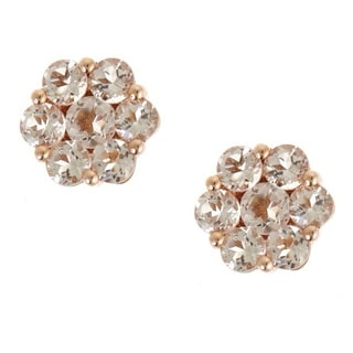 Anika and August 10k Rose Gold Round-cut Morganite Earrings