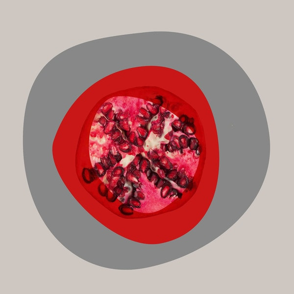 Marmont Hill - Pomegranate by Irena Orlov Painting Print on Canvas