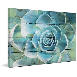 Marmont Hill - Succulent Extravaganza by Irena Orlov Painting Print on Canvas
