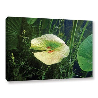 ArtWall Ed Shrider's Butler Lake #6, Gallery Wrapped Canvas