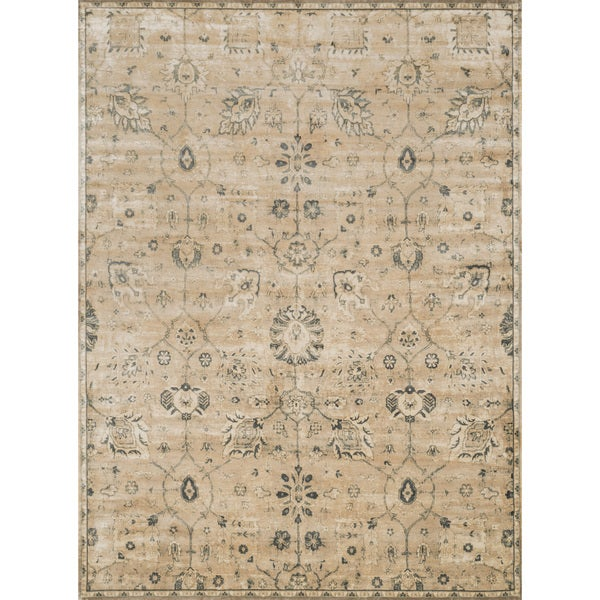 Traditional Distressed Beige/ Grey Floral Rug - 7'6 x 10'5
