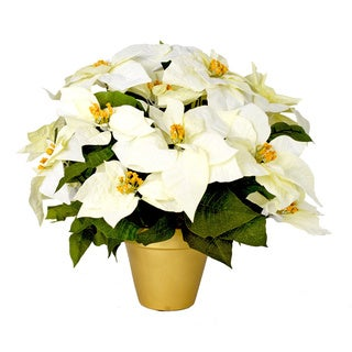 Decorative White Poinsettias In Golden Clay Planter