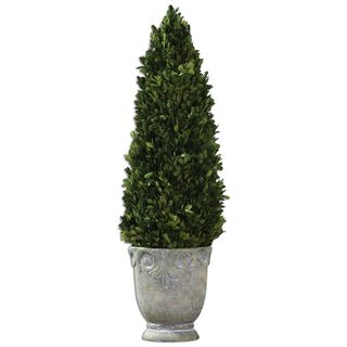 Link to Boxwood Cone Topiary Similar Items in Decorative Accessories