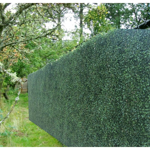 how to make a hedge fence