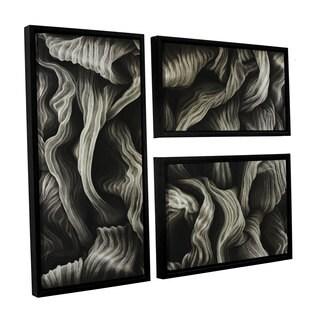 ArtWall John Sabraw's Clover, 3 Piece Floater Framed Canvas Flag Set