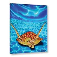 ArtWall Daniel Jean-Baptiste's Paradise Turtle, Gallery Wrapped Canvas