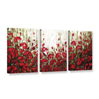 ArtWall Susanna Shaposhnikova's Olive Red Poppies, 3 Piece Gallery Wrapped Canvas Set