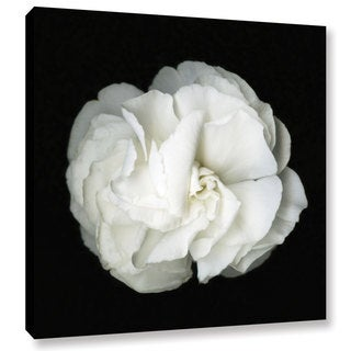 ArtWall Susanna Shaposhnikova's White Flower, Gallery Wrapped Canvas