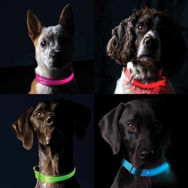shop furhaven polyester led safety pet collar free shipping on