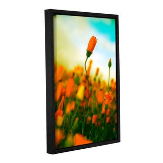 ArtWall Elena Ray 'African Daisy ' Gallery-wrapped Floater-framed Canvas